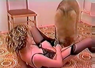 Horny dog fucking a seductive slut