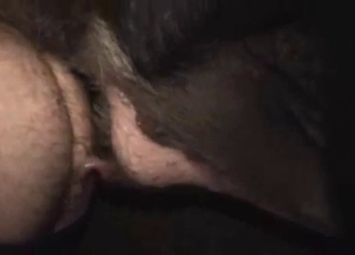 Hairy male ass nicely fucked by a sweet beast