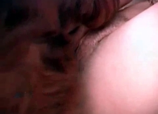 Hardcore pussy pounding with a mutt
